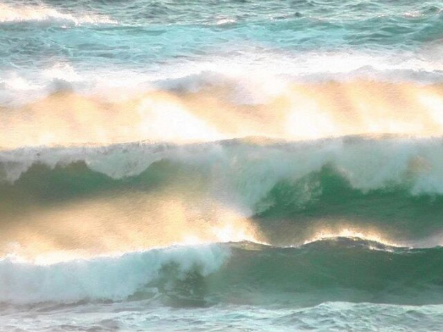 big_wave_20120202.jpg